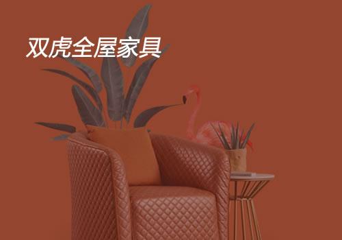 双虎全屋家居-东莞网站设计