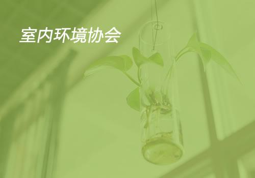 室内环境协会-东莞网站制作